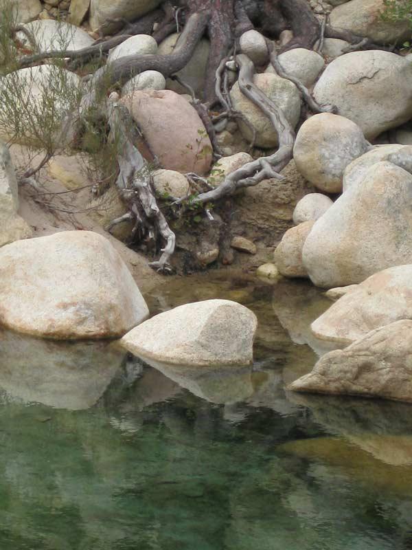 Qigong Erdung Stabilitaet, fließende Bewegung Körper Geist Seele Achtsamkeit Konzentration ganzheitliche Gesundheit